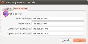 HostOnly network DHCP server